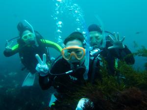 20140707伊豆 海洋公園 体験ダイビング2