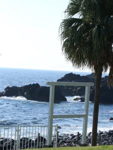 141019伊豆 海洋公園