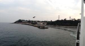141011初島 ダイビング