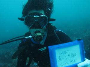 20141012伊豆 富戸 体験ダイビング