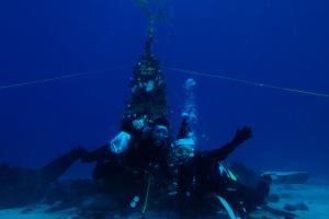 20141215伊豆 ダイビング 富戸体験ダイビング