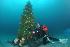 20141211伊豆 ダイビング 伊豆海洋公園クリスマスツリー