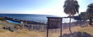 150117伊豆 ダイビング 伊豆海洋公園