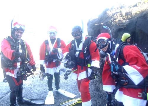 20151121伊豆 ダイビング 伊豆海洋公園 クリスマス