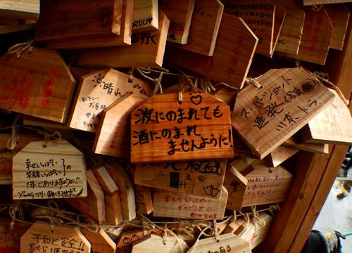20151231伊豆 ダイビング 伊豆海洋公園 大晦日ナイト (4)