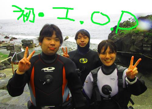 20160423伊豆 ダイビング伊豆海洋公園  (4)