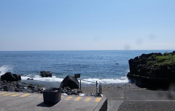 20160513伊豆 ダイビング 伊豆海洋公園