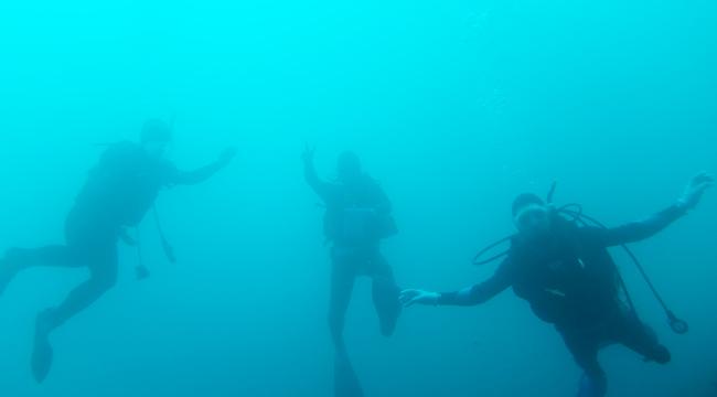 20160506伊豆 ダイビング 伊豆海洋公園 ライセンス取得講習 (2)