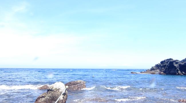 20160706伊豆 ダイビング 伊豆海洋公園