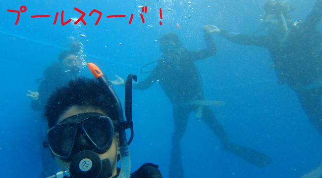 20160811伊豆 ダイビング 伊豆海洋公園 ダイビングライセンス講習