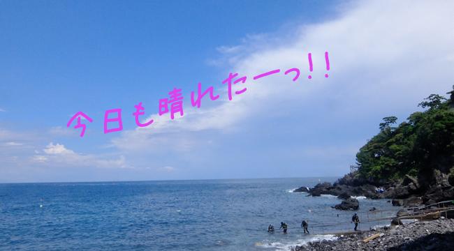 20160801伊豆 ダイビング 富戸 (5)