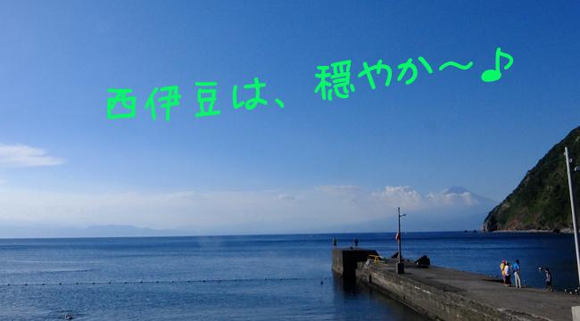 20160807伊豆 体験ダイビング 井田 (6)