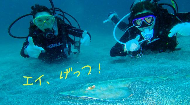 20160913伊豆 ダイビングライセンス取得 伊豆海洋公園2
