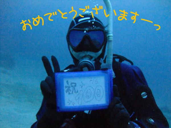 20170205伊豆 ダイビング 伊豆海洋公園 3DIVE2