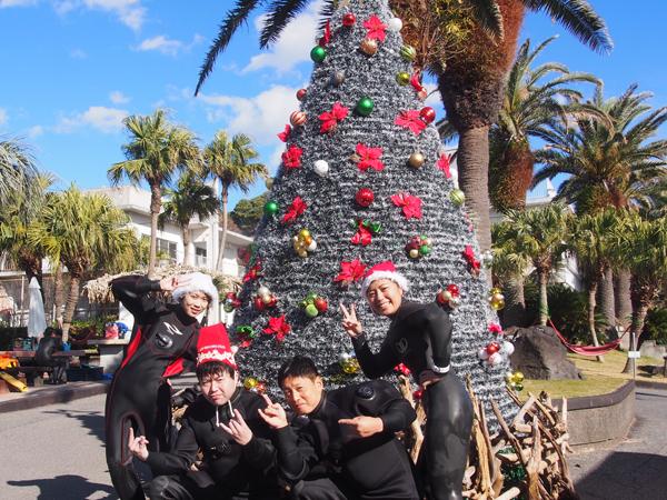 20171210伊豆 ダイビング 伊豆海洋公園 クリスマスツリー