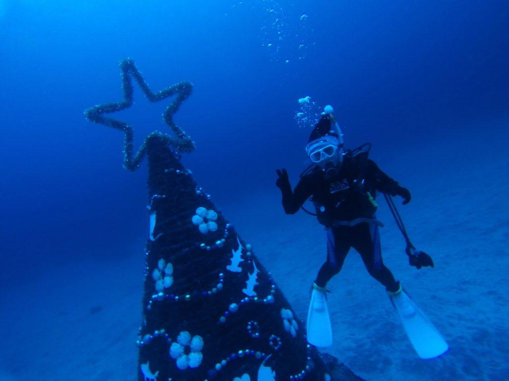 20181209伊豆 ダイビング 水中クリスマスツリー